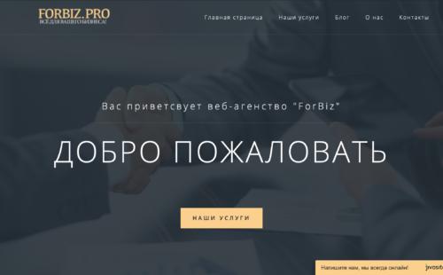 SEO продвижение сайта forbiz.pro